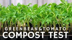 Are you ready to feed your garden? Give your compost a test with this Simple Garden Compost Test