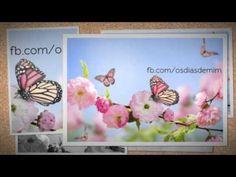 Mensagem para uma vida positiva - Fabio Teruel 20/10/2015 - YouTube