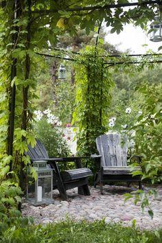 Ensimmäisenä kesänä laitoimme kehikon paikoilleen, toisena teimme viherseinän raudoitusverkosta ja istutimme villiviinit ja humalat, lopuksi teimme kivetyksen.