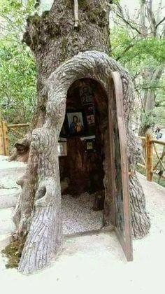 A shrine/altar inside a tree Weird Trees, Saint Chapelle, Vie Simple, Prayer Corner, Home Altar, Unique Trees, Place Of Worship, Kirchen, Architecture