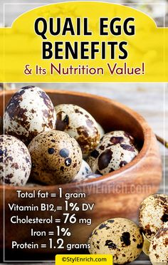 We are aware chicken eggs but, eggs from a small bird called Quail has also gained popularity. Let's see the quail eggs benefits & it's nutritional content. Quail Eggs Benefits, Egg Benefits, Health Benefits, Health Tips, Proper Nutrition, Nutrition Education, Healthy Nutrition, Nutrition Guide, Nutrition Data