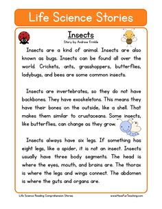 How to teach Reading Comprehension This Insects Life Science Reading Comprehension Worksheet will help your students build their reading comprehension skills while reading a non-fiction text about insects. Science Worksheets, Reading Worksheets, Science Lessons, Life Science, Science Student, Science Topics, Forensic Science, First Grade Science, Science Biology