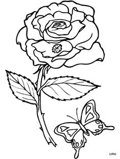Coloring Pages Of Flowers And Butterflies Rose Butterfly