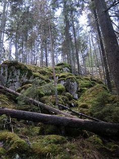 Nuuksio National Park