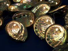 THHH: lifestyle blog: DIY: Abalone Shells Fairy Lights + Ornaments.