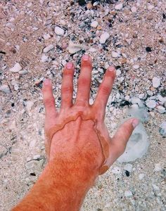 This is how it looks when you put your hand in the ultra-clear water of Flathead Lake.