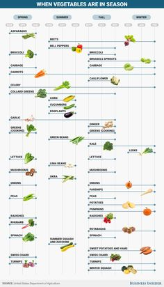 BI Graphics_When vegetables are in season