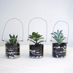 Kit 3 mini terrariums à suspendre fer