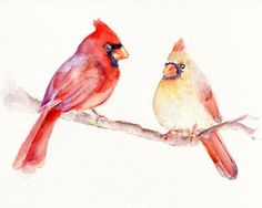 Cardinal Pair Original Watercolor Painting by Marysflowergarden