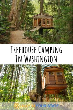 If you're looking for a fun, romantic camping adventure, head to this treehouse resort in Washington. It's a charming destination with plenty of amenities. You'll be surrounded by nature in a peaceful and pretty area. It's adults and teens only for a relaxing atmosphere. It's great for a honeymoon or summer vacation.