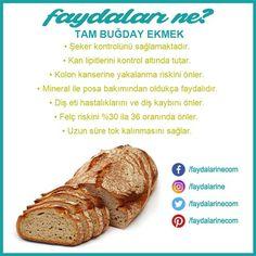 #ekmek #buğday #tambuğday #tambuğdayekmek #tambuğdayekmeğinfaydaları #faydaları #faydalari #faydalarıne #faydalarine