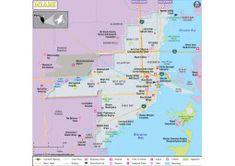 Buy World Latitude and Longitude Map Blank World Map, Cool World Map, World Map Online, Usa Road Map, Latitude And Longitude Map, India World Map, Istanbul Map, World Political Map, Belgium Map
