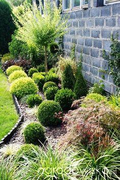 Atelier Ogrodowe... - strona 47 - Forum ogrodnicze - Ogrodowisko