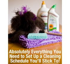 A HUGE roundup of cleaning schedules.