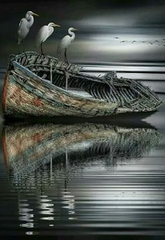 Beyond the Gates of Hell Amazing Photography, Landscape Photography, Nature Photography, Abandoned Ships, Boat Art, Old Boats, Boat Painting, Fishing Boats, Great Photos
