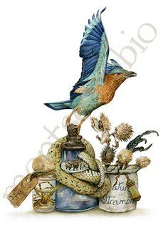 Montse Rubio Illustrator
