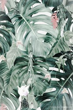 A Side Project is a creative space featuring original pattern artwork by Shelley Steer and Louise. Tumblr Backgrounds, Cute Backgrounds, Wallpaper Backgrounds, Wallpapers, Tropical Design, Tropical Art, Tropical Prints, Tropical Pattern, Plant Illustration