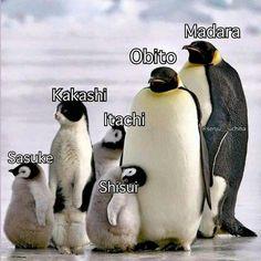 #wattpad #humor Memes de anime... Isso é meio óbvio né? Se sim,pq ta lendo isso? Não gostou? SUPERA Anime Naruto, Naruto Comic, Naruto Sasuke Sakura, Naruto Cute, Otaku Anime, Naruto Uzumaki Shippuden, Boruto, Kakashi Sensei, Itachi Uchiha