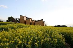 Museum of Handcraft Paper / TAO | ArchDaily