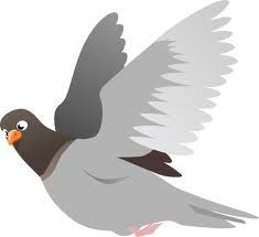 My animation uses a flying pigeon and having this image of one mid flight will help with designing it. This also goves me an idea of what pigeons look like in flight.