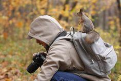 perfectanimalshots42 640x429 36 Perfectly Timed Animal Shots