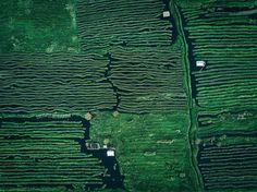 Inle Lake, Myanmar From Above by Dimitar Karanikolov