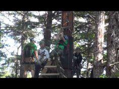 ▶ Grizzly Falls Ziplining Expedition - Skagway, Alaska