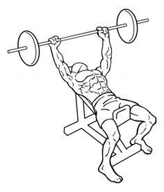 Incline Bench Press1