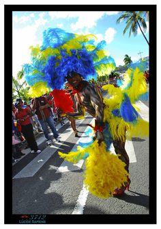 Le journal du K'ART-naval de la Martinique : Tourisme et carnaval en Martinique