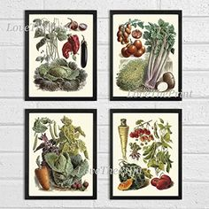 Vegetable Print Set of 4 Art Prints Antique Beautiful Cabbage Red Peppers Cucumber Tomato Strawberry Carrot Green Vegeterian Garden Nature Home Room Decor Wall Art Unframed LPP >>> Find out more about the great product at the image link.