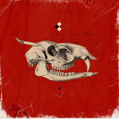 La muerte roja by Cristian Escobar, via Flickr