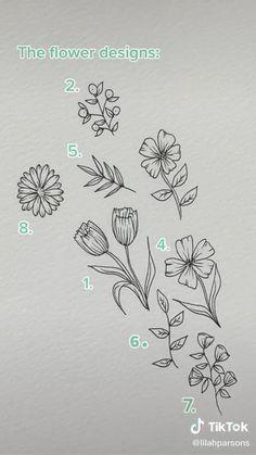 Flower Line Drawings, Flower Sketches, Art Drawings Sketches Simple, Pencil Art Drawings, Easy Drawings, Plant Sketches, Line Flower, Floral Drawing, Lilies Drawing