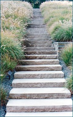 Limestone Stone Step Staircase In A New Jersey Landscape
