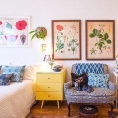 In NYC, A 400-Square-Foot Sanctuary | Design*Sponge