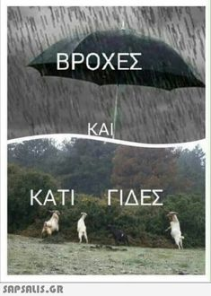 Greek Memes, Funny Greek Quotes, Best Funny Pictures, Funny Photos, Funny Photo Memes, Funny Letters, Funny Statuses, Old Memes, Funny Times