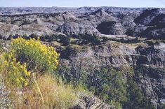 Theodore Roosevelt National Park, ND.  TR first president to take land from Indians for NPs.