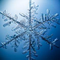 【雪  snow】 雪片