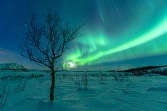 Into the moon; Lofoten Norway by Achim Sieger