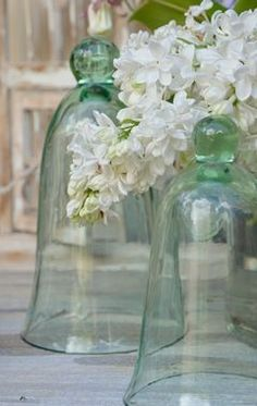 Lovely green cloches