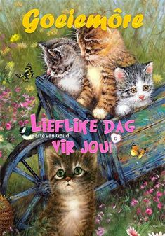 Good Morning Picture, Morning Pictures, Good Morning Wishes, Good Morning Quotes, Lekker Dag, Goeie Nag, Goeie More, Afrikaans Quotes, Love You
