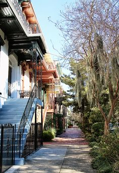 The gorgeous streets of Savannah, Georgia!