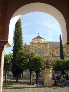Córdoba - Mezquita - Patio de los Naranjos  - photo: Robert Bovington  #Cordoba #Andalusia #Spain #España  #Mezquita http://bobbovington.blogspot.com.es/
