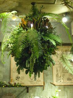 Indoor Gardens For Your Home Air Plants, Indoor Plants, Succulents Garden, Planting Flowers, Zen Home Decor, 16 Bars, Personalised Family Tree, Floral Chandelier, Garden Cafe