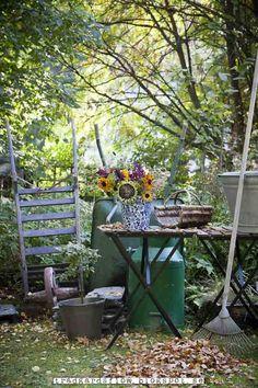 Trädgårdsflow: September garden