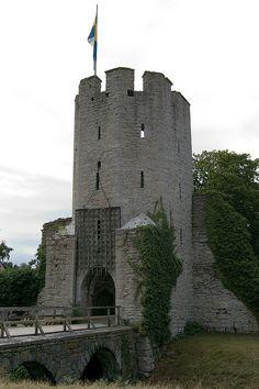 Visby Castle, Gotland, Sweden  LOTS OF castles :)