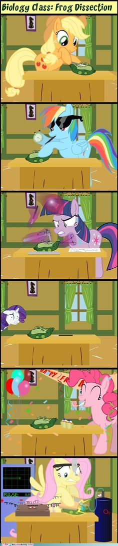 So Pinkie Pie throws the dead frog a party? Well, then again, I'm the Rarity here, so...