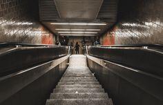 Gotham Edit - NYC - Down The Rabbit Hole