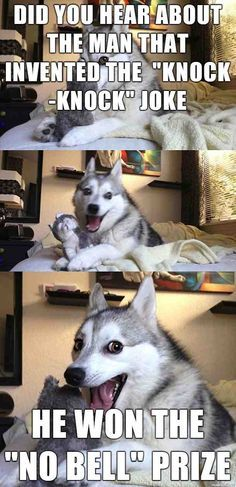 7 Pun Dog Puns That Will Instantly Brighten Your Day! On Dogs Dogs # - Funny Husky Meme - Funny Husky Quote - The post 7 Pun Dog Puns That Will Instantly Brighten Your Day! On Dogs Dogs # appeared first on Gag Dad. Husky Jokes, Funny Husky Meme, Funny Dog Jokes, Puns Jokes, Corny Jokes, Dog Quotes Funny, Crazy Funny Memes, Really Funny Memes, Funny Relatable Memes