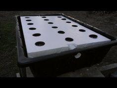 Off-Grid Hydroponics Experiment - The Kratky Method & Floating Raft Hydroponics - YouTube