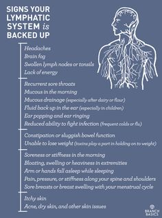 Branch Basics | Signs Your Lymphatic System is Backed Up